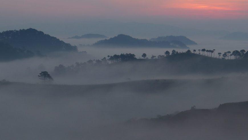 Săn sương mù Đà Lạt