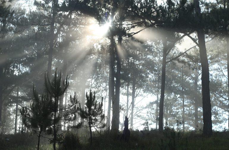 Vòng tay sương khói – Thơ La Văn Tuân