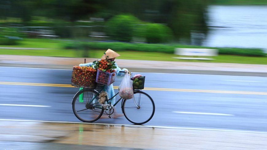 Đà Lạt, những ngày mưa